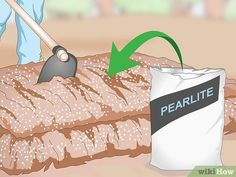 How to Prepare the Soil for Strawberries: 15 Steps (with Pictures) Strawberry Beds, Strawberry Plants, Vegetable Crates, Vegetable Garden, Growing Strawberries In Containers, Growing Winter Vegetables, Soil Layers, Peat Moss, Organic Matter