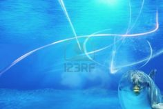 Sold at 123rf: Abstract underwater background with dolphin. Stock Photo - 14599969