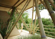 Bambú en estructuras de casas