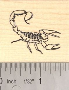 Scorpion Rubber Stamp >>> Read more reviews of the product by visiting the link on the image.