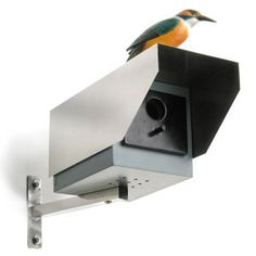Ever get the feeling you're being watched? http://www.iwantoneofthose.com/gift-outdoor/big-brother-cctv-styled-bird-house/10602602.html