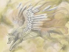 fantasy wolves with wings | WOLF ANGEL - angel, wolf, wings, white, feathers, animal