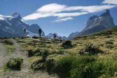 La magia de recorrer un sendero en la Patagonia chilena (en Torres del Paine)