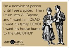 I'm a nonviolent person until I see a spider. Then I turn into Al Capone, and 'I want him DEAD! I want his family DEAD! I want his house burned to the GROUND!'
