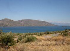 Οικόπεδο 690 τ.μ. προς πώληση Σκροπονέρια (Ανθηδώνος) 1136853_1    Spitogatos.gr