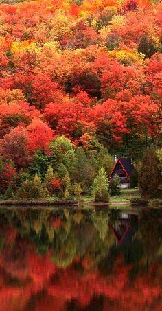 Cozy cabin in the Laurentian Mountains of Quebec, Canada • photo: Alan Marsh on Designpics   @Explore Canada