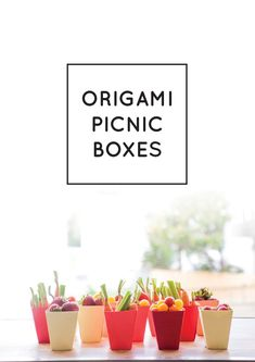Origami Picnic Boxes DIY #diy #boxes #party #picnic