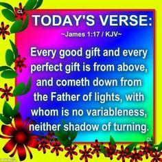 1 kings 17 8 24 nrsv bible verses
