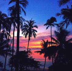First light in Phuket. Always awake before the sun 🌞 Beautiful Sunset, Life Is Beautiful, Beautiful Places, Beautiful Scenery, Creative Pictures, Instagram Images, Instagram Posts, Summer Of Love, One Light