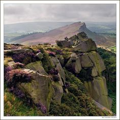 """The Roaches, Staffordshire, England, by Kevin Palmer. """"A view towards Hen Cloud, .. taken in late August when the heather was at its best."""""""