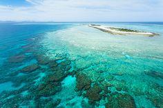 Parasailing over Nagan-nu Island, Okinawa, Japan by ippei & janine naoi