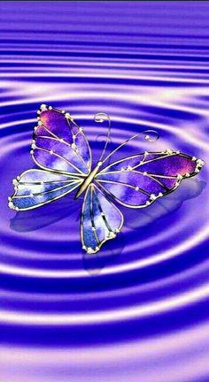 Already needed Schon gebraucht - Unique Wallpaper Quotes Purple Butterfly Wallpaper, Butterfly Background, Flower Phone Wallpaper, Cute Wallpaper Backgrounds, Butterfly Art, Love Wallpaper, Cellphone Wallpaper, Galaxy Wallpaper, Beautiful Flowers Wallpapers