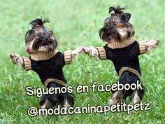 te esperamos en Facebook también!!!  @modacaninapetitpetz