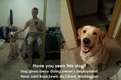 PLEASE HELP THIS SOLDIER FIND HIS DOG!!! PLEASE SHARE FAR AND WIDE. WE OWE IT TO THIS SOLDIER TO HELP HIM OUT. https://www.facebook.com/photo.php?fbid=640546425980308=a.480395975328688.115466.480392341995718=1.