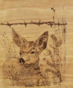 Free Pyrography Patterns | pyrography wood - group picture, image by ...