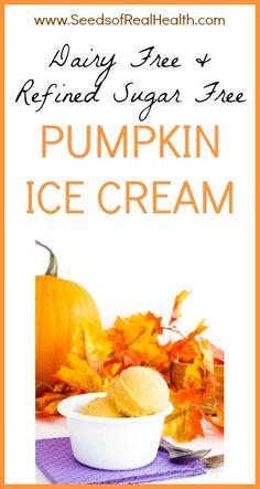 Dairy Free Pumpkin Ice Cream