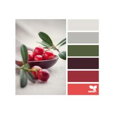 berried hues ❤ liked on Polyvore featuring colors, design seeds, color palettes, seeds, backgrounds and filler