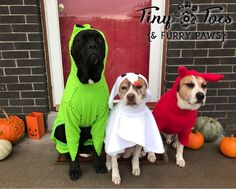Howl-O-Ween is on it's Way!!!
