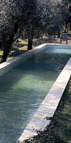 a beautiful lap pool