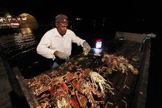 The Lobster Trap - fresh BBQ lobster Setting Point, Anegada Bvi Sailing, Sailing Trips, Lobster Trap, Virgin Gorda, Wanderland, West Indian, Caribbean Recipes, British Colonial, British Virgin Islands