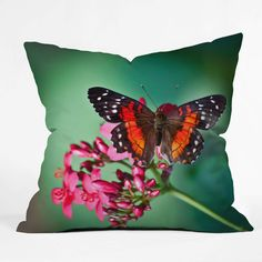 Looking for great Deny Designs Bird Wanna Whistle Butterfly Throw Pillow, 16 x 16 by cheap price? Kids Bedding Sets, Butterfly, Throw Pillows, Bird, Design, Children's Bedding Sets, Toss Pillows, Cushions, Birds