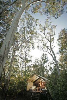 Paperbark camp, Jervis Bay