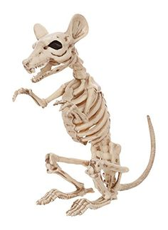 Crazy Bonez Skeleton Rat ** Check this awesome product by going to the link at the image.