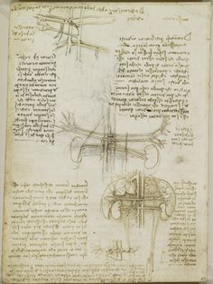 Leonardo Da Vinci (Vinci 1452 Amboise 1519)   Recto: The Heart Compared  Leonardo Da Vinci Resume