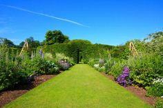 Idealnie przycięty trawnik!