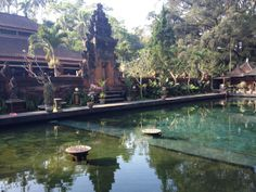Excursion from Ubud: Tampaksiring and the Water Temple