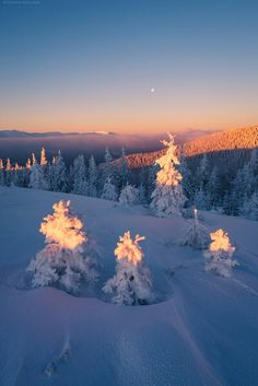 Fairytale winter - photo by Alexander Kotenko Winter Szenen, I Love Winter, Winter Magic, Winter Season, Winter Wallpaper, Sunset Wallpaper, Winter Photography, Nature Photography, Best Friend Poems