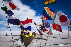 Bandeiras Uyuni