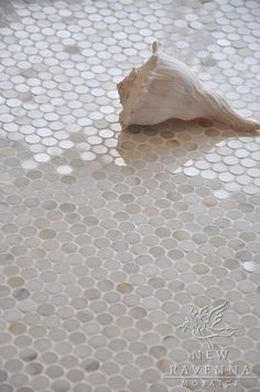 2 cm Pennyrounds shown in Calacatta Gold polished (New Ravenna Mosaics)-- gold tone for master bath carpet and/or shower floor? Bathroom Floor Tiles, Shower Floor, Tile Floor, Room Tiles, Mosaic Bathroom, Shower Niche, Shower Pan, Shower Bathroom, Bathroom Red