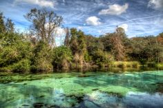 Weeki Wachee Florida. Clear water springs that flow out.