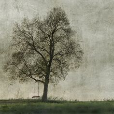 Nature by jamie heiden - a gallery on Flickr
