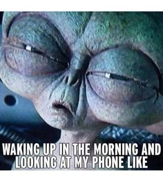 Are you looking for memes of good morning to share with your friends and colleagues? Here we have added Funny good morning memes that will cheer your mornings instantly and will make you feel less lazy. Memes Humor, Gym Humor, Workout Humor, Jokes, Humor Quotes, Fitness Humor, Fitness Nutrition, Morning Gym, Early Morning Workouts