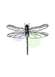Dragonfly Stretched Canvas by Zarya Zarkova on Dragonfly Drawing, Small Dragonfly Tattoo, Dragonfly Art, Butterfly Art, Butterflies, Blue Tattoo, Dark Tattoo, Insect Tattoo, Tattoo Zeichnungen