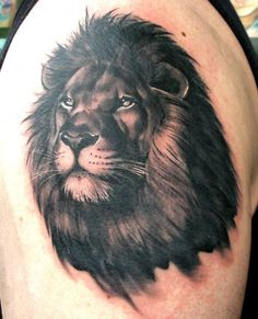 Lion tattoo - 50 Examples of Lion Tattoo  <3 <3