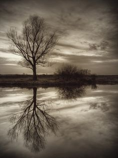 Amazing Examples Of Reflection Photography