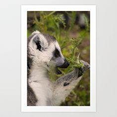 Lemur #1 Art Print by Jinzha Bloodrose - $15.60