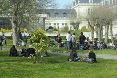 La pelouse du Campus UCO, Angers - Photo YLB