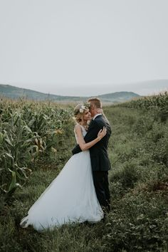 Stunning corn field wedding portrait | Image by Page & Holmes Photography