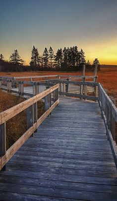 weather is still here to enjoy in Yarmouth & Acadian Shores. Drive, bike or come walk one of our many multi-use like the Tkipok Trail in Yarmouth County and see for yourself! Tourist Information, Fall Weather, Railroad Tracks, Travel Guide, Things To Do, Trail, Walking, Bike, Sunset