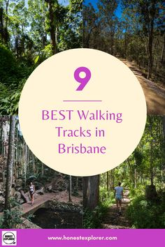 Best walking tracks in Brisbane! Here are my favourite places to go for a walk in Brissy. From bush walks to pretyy parks and gardens. Top Destinations, Holiday Destinations, Australia Travel Guide, Explore Travel, Hiking Tips, Hotel Reviews, Brisbane, Places To Go, Things To Do