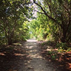 Oleta River State Park in Miami, FL hiking trails on ocean ...thelocalvibe.com