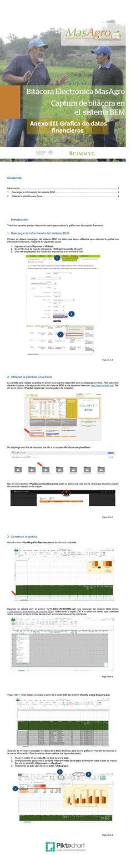 Grafica con datos financieros | Piktochart Infographic Editor