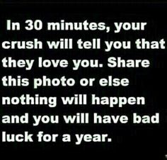 Had enough bad luck for a year don't want anymore<---- Ugh I don't think this is true but JUST IN CASE Just Do It, Just In Case, Told You So, Teen Posts, Teenager Posts, Chain Messages, No Kidding, I Like Him, Daughter Of God