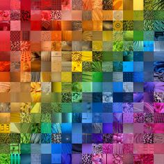 color wheel - great collaborative collage project! Warm to cool & light to dark values.