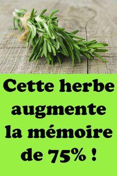 Cette herbe augmente la mémoire de 75% ! #mémoire #intelligent #cerveau #plantes #concentration