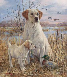 Pride and Joy - Yellow Labradors by Jim Killen